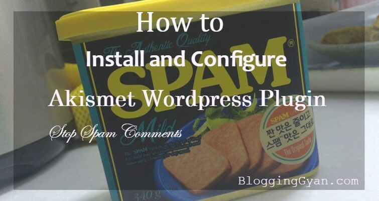 Akismet WordPress Plugin Configure Kaise Kare Step by Step Guide Hindi Me