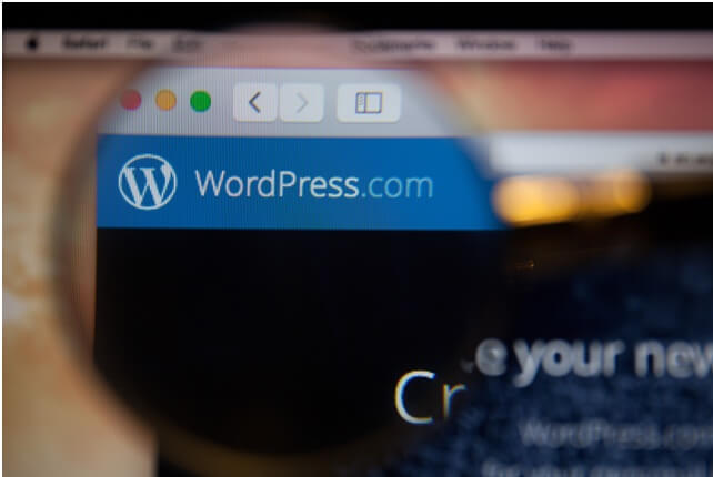 Feedreaders and WordPress Themes Vs. The Design Experience